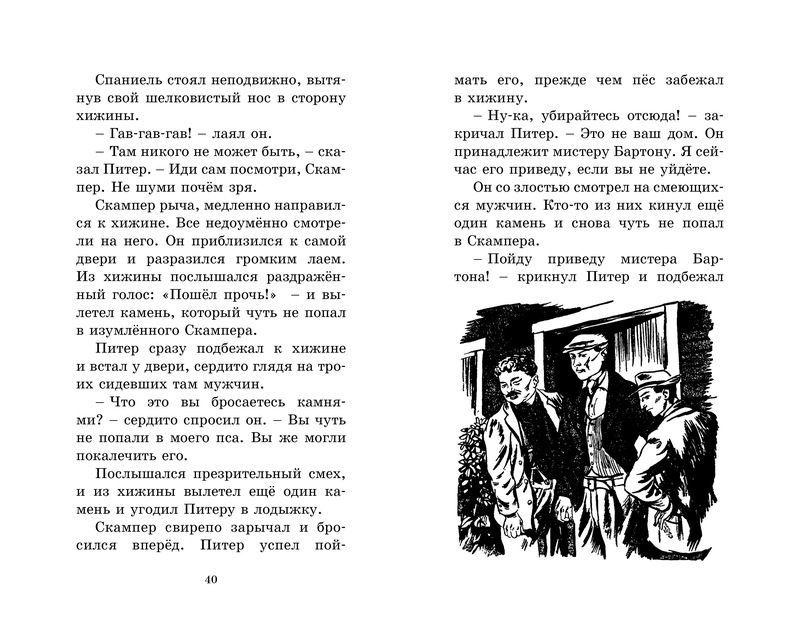 """Купить книгу """"Странная кража"""""""