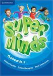 Super Minds 1. Flashcards