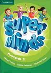 Super Minds 2. Flashcards