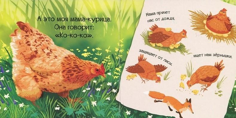 "Купить книгу ""Знакомься, я цыпленок"""