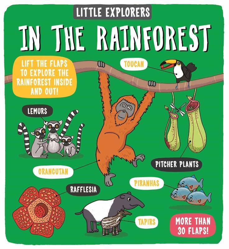"""Купить книгу """"Little Explorers: In the Rainforest"""""""