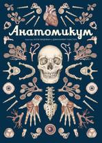 Анатомикум