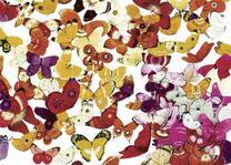 "Купить книгу ""Один миллион бабочек"""