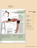 Анатомия растяжки и 100 базовых упражнений - купить и читать книгу