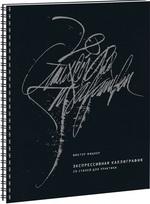 Экспрессивная каллиграфия. 20 стилей для практики