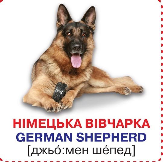 """Купить книгу """"Розумні картки. Собаки. 12 карток"""""""