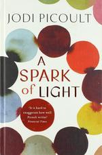 A Spark of Light - купить и читать книгу