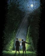 Harry Potter and the Goblet of Fire (Illustrated Edition) - купить и читать книгу