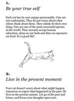 "Купить книгу ""100 Ways to Be More Like Your Cat"""