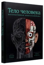 Тело человека. Интерактивная книга-панорама - купить и читать книгу