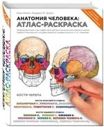Анатомия человека: атлас-раскраска - купить и читать книгу