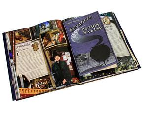 """Купить книгу """"Гарри Поттер. Рождение легенды"""""""