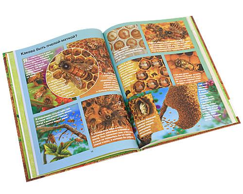 """Купить книгу """"Все, что вы хотели знать о насекомых"""""""
