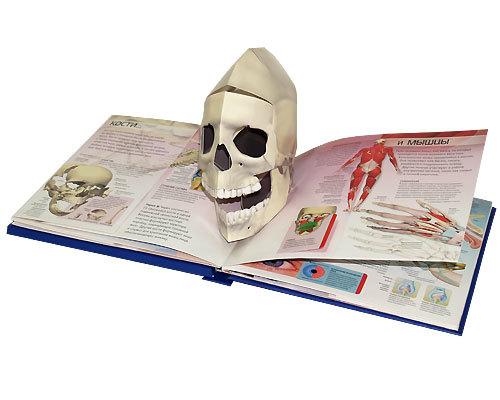 """Купить книгу """"3D атлас человеческого тела"""""""