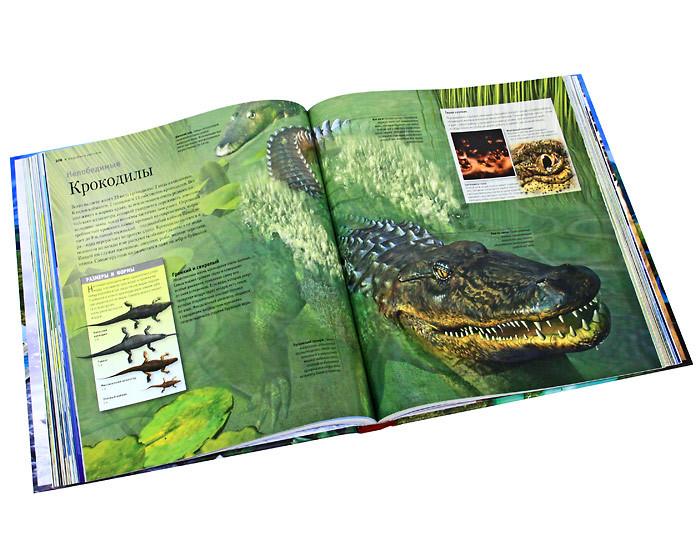 """Купить книгу """"Суперэнциклопедия животных"""""""