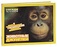 """Купить книгу """"Животные джунглей"""""""