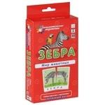 Зебра. Мир животных. Окружающий мир (набор из 48 карточек)