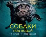 Собаки под водой. Мокрые и смешные