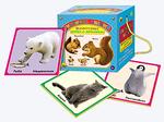 Животные дикие и домашние. Сундучок знаний