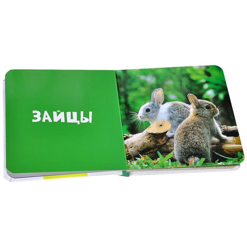 """Купить книгу """"Животные. Фото-книга"""""""