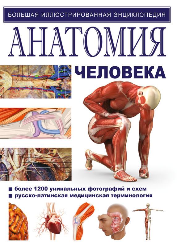 """Купить книгу """"Анатомия человека"""", автор Йоганес В. Роен, С. Йокочи, Э. Лютьен-Дреколл"""