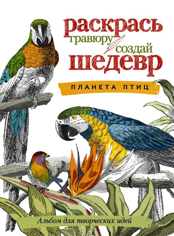 """Купить книгу """"Планета птиц. Альбом для творческих идей"""""""